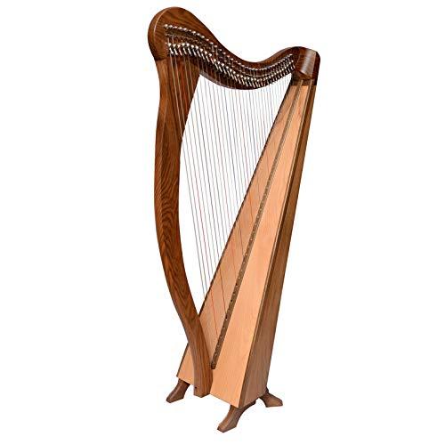 Arpa Ard Ri Arp, Arpa celtica irlandese, arpa irlandese a leva intera irlandese