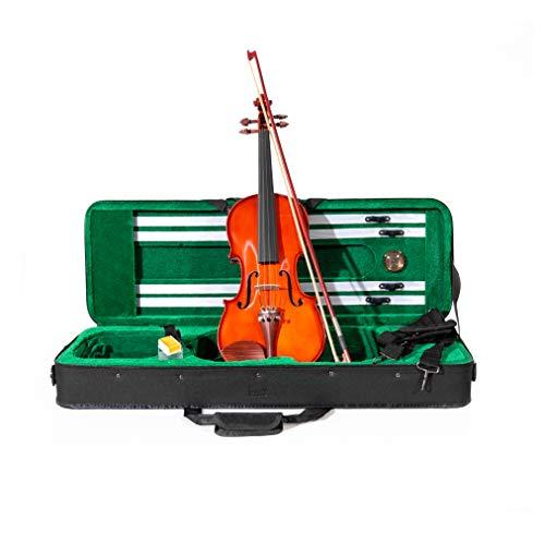 Violino ffalstaff ® 4/4'Accademy' con Top in Massello, Parti in Palissandro, Custodia Rettangolare e Accessori