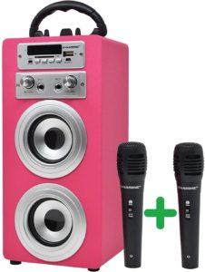 Dynasonic- cassa per karaoke economica