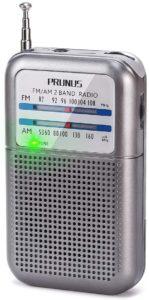 Prunus Degen-333- mini radio portatile