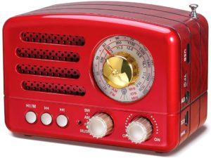 Prunus- radio portatile vintage
