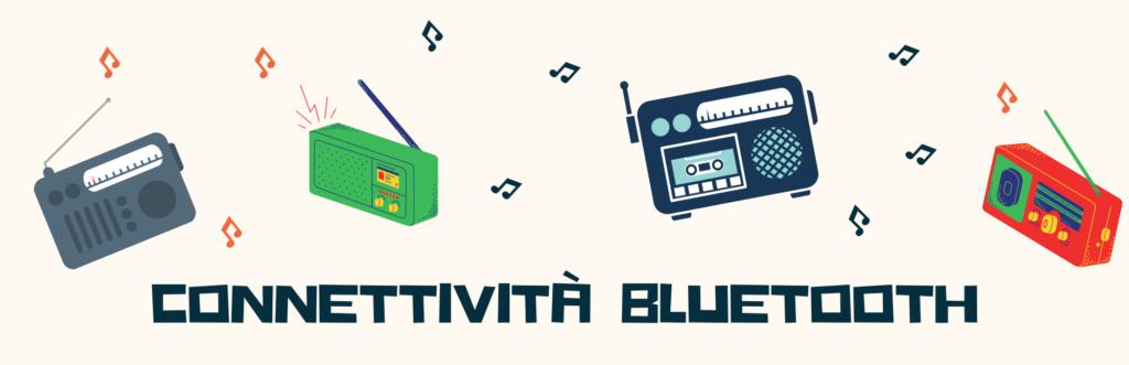 radio portatile Connettività Bluetooth _ Wireless