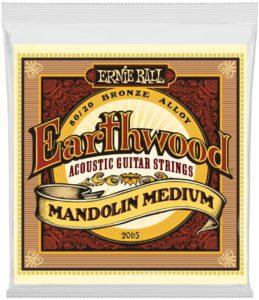 Ernie Ball Earthwood